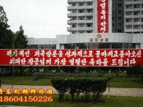 丹东到朝鲜旅游报价,朝鲜四日游旅游报