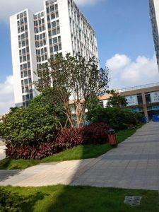 广东泰成逸园养老院