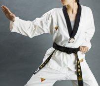 北京跆拳道培训