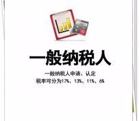 天津一般纳税人