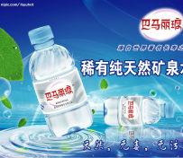 巴马丽琅500ml*12瓶(