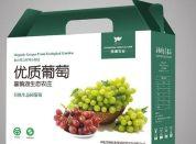郑州产品海报设计哪家强 郑州产品海报设计印刷价格