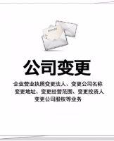 上海浦东公司变更