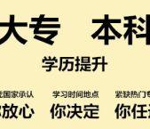 上海自学考试培训