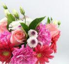 升级包月每周一花-首单送花瓶