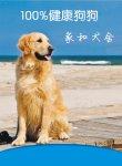 来重庆家和犬舍挑选100%健康狗狗!