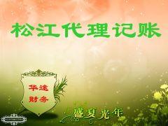 上海松江代理记账图册