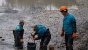 北京池塘淤泥清理