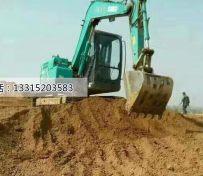 保定哪能学挖掘机操作,保定挖
