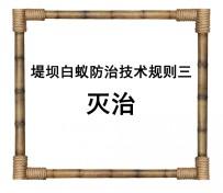 堤坝白蚁防治技术规则三:灭治