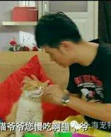 猫咪参加爱情公寓拍摄