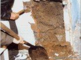 楼房地基白蚁防治方法,东莞白蚁防治